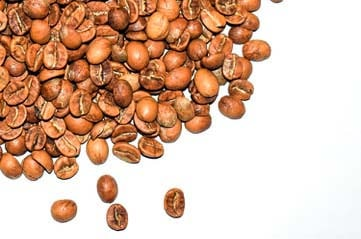 Arabic Coffee Seeds